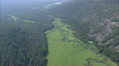 AERIAL United States-Pintler Creek Valley Stock Footage