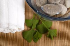 alternative medicine. ginkgo biloba therapy - stock photo