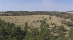 AERIAL United States-Standing Stones On Hill Top In Curt Gowdy State Park Stock Footage