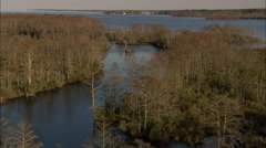 AERIAL United States-Flight Drifting Down Creek In Bull Neck Swamp Research - stock footage