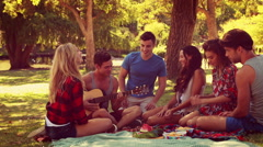 Happy friends in the park having picnic and playing guitar - stock footage