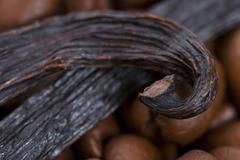 aroma coffe. ingredients. coffe beens, vanilla - stock photo