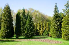 Spring. peaceful landscape. majestic garden Stock Photos