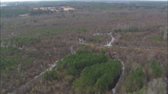 AERIAL United States-Swamp Landscape Stock Footage