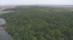 AERIAL United States-St Simons Island And Ossabaw Black Pig Stock Footage