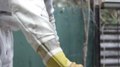 Beekeeper working Honey bee macro footage of bee hive and apiarist  Stock Footage