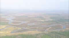 AERIAL United States-Landscape Around The Nassau River - stock footage