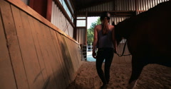 Girl leading her horse out of stables with vintage feel Stock Footage