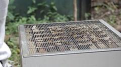 Opening Honey bee macro footage of bee hive and apiarist beekeeper Stock Footage