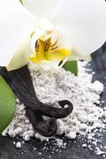 Vanilla beans with aromatic sugar and flower Stock Photos