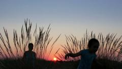 Mother with her child walking at sunset time through field Stock Footage