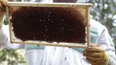 Holding up Honey bee macro footage of bee hive and apiarist beekeeper Stock Footage