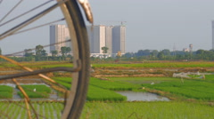 Construction and old bicycles are seen together as rice farmers work in fields Stock Footage