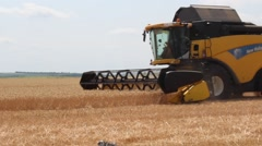 Harvester reaps wheat Stock Footage