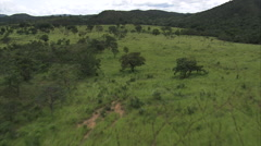 AERIAL Brazil-North Section Of Brasilia National Park - stock footage