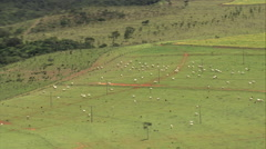 AERIAL Brazil-Low Flight Across Grassland And Fields, Minas Gerais State Stock Footage
