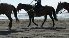 Horses, Horseback Riding, Beach, Ocean, Vacation Stock Footage