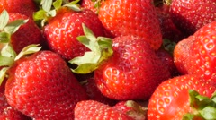 Many red strawberries arranged tasty fruit background slow tilting 4K  - stock footage