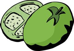 Sliced Green Tomato Stock Illustration