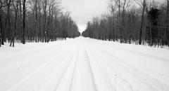 Desolate Country Backwoods Road Covered in Fresh Snow Stock Photos