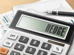 Calculator with the word hedge Stock Illustration