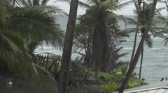 Choppy sea coconut trees - stock footage