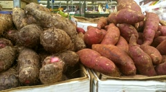 Sweet potato vegetable  with  soil in birmingham city centre Stock Footage