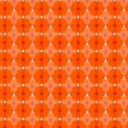 Orange cosmos seamless pattern background - stock illustration