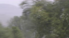 Trees blowing in rains storm through watery window - stock footage