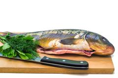 Fish and components for her preparation on a white background. Stock Photos