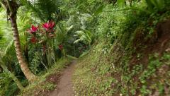 Walking along tropical forest path hillside, river water sound, lush vegetation Stock Footage