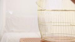 Empty golden birdcage Stock Footage