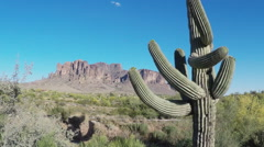 Stock Video Footage of Saguaro Cactus With Superstition Mountain Behind- Apache Junction AZ