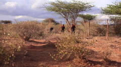 Building a barbed wire fence for security, Africa, rural Kenya, long shot - stock footage