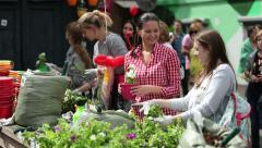 Volunteer gardeners plant flowers in pots and decorate the old courtyard. Stock Footage
