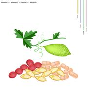 Balsam Pear with Vitamin K, C, A and Minerals - stock illustration
