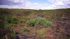 Remote lush river rock bed in Kenya savannah, Africa Stock Footage