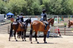 Hunter Riders waiting to compete - stock photo