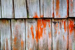 Decayed Timber - stock photo