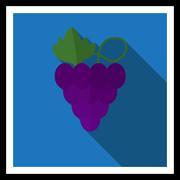 Grape icon - stock illustration