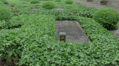 Graves in   the High Cathedral of Saint Peter in  Trier Stock Footage