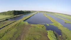 Florida Everglades drone flying over swamp water in nature reserve 4k Arkistovideo