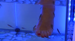 French Fish Pedicure Stock Footage