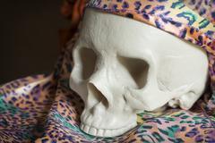 Cool Skull Stock Photos