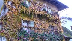 Vine Covered Old House, Chanaz, France Stock Footage