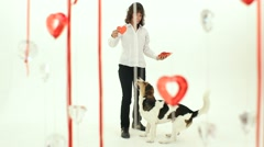 Dog Dancing With The Hostess On Valentine's Day - stock footage