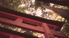 Looking up at the famous orange gates at Fushimi Inari Shinto shrine in Kyoto Stock Footage