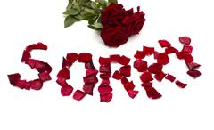 """Text """"forgive"""" also bouquet  of red roses Stock Photos"""