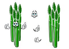 Asparagus vegetable spears cartoon character Stock Illustration