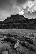 Colorado River at Lees Ferry Black and White Vertical - stock photo